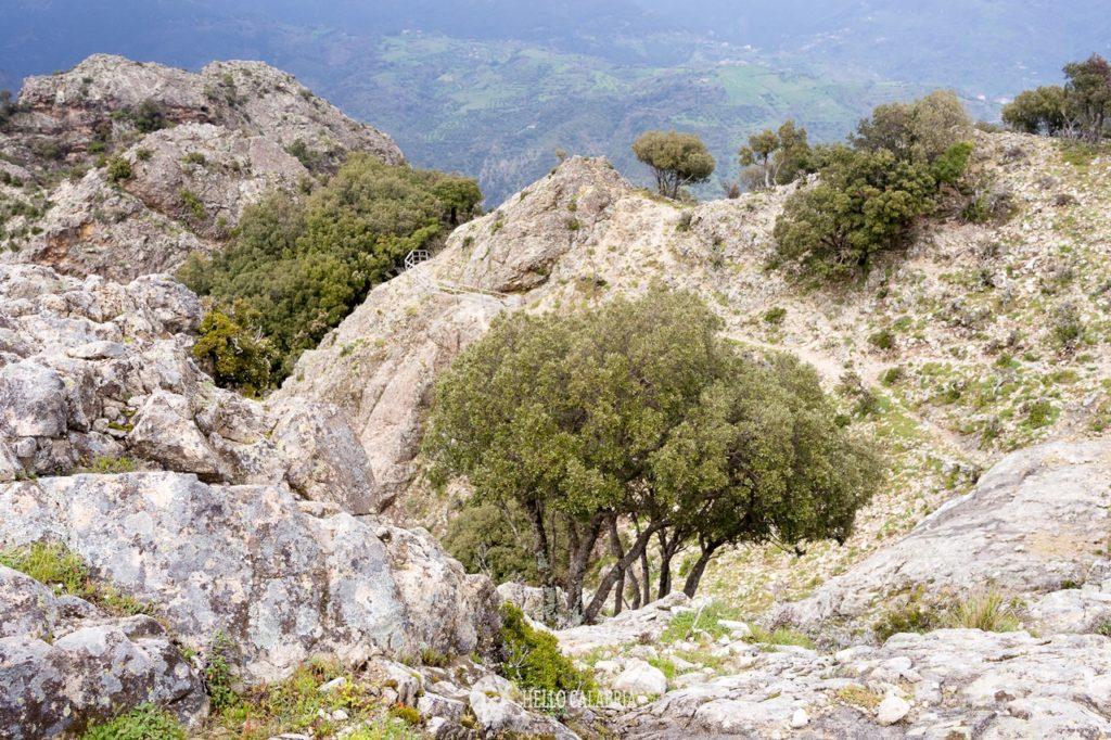 Monte tre Pizzi trekking, Antonimina, Aspromonte